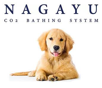 NAGAYU Dog Grooming System